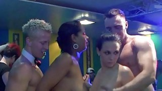 Darlings are having sexual fun with males